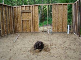 Blog- Cabin3