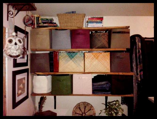 Blog- Shelf