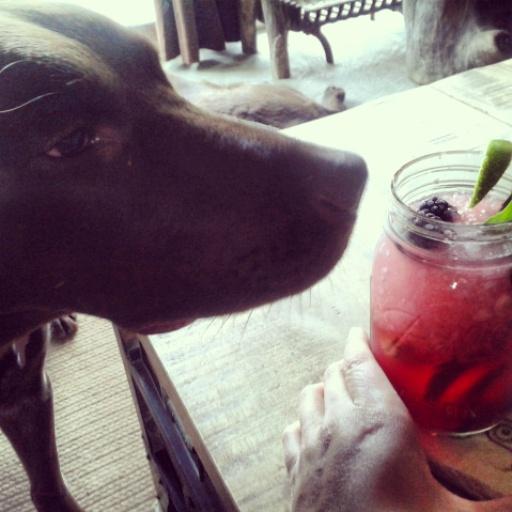 Pete- cocktail