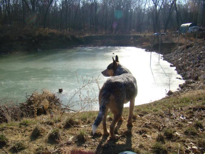 pond23
